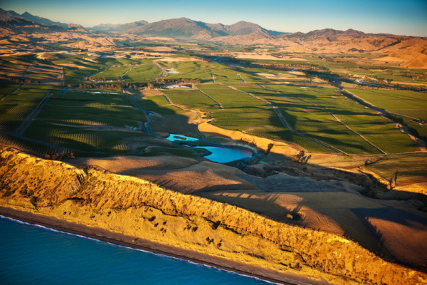Seaview Vineyard From The Air-0041395